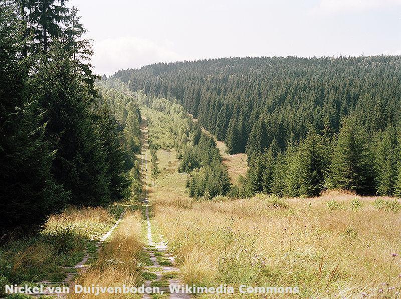Wandern auf dem Harzer Grenzweg