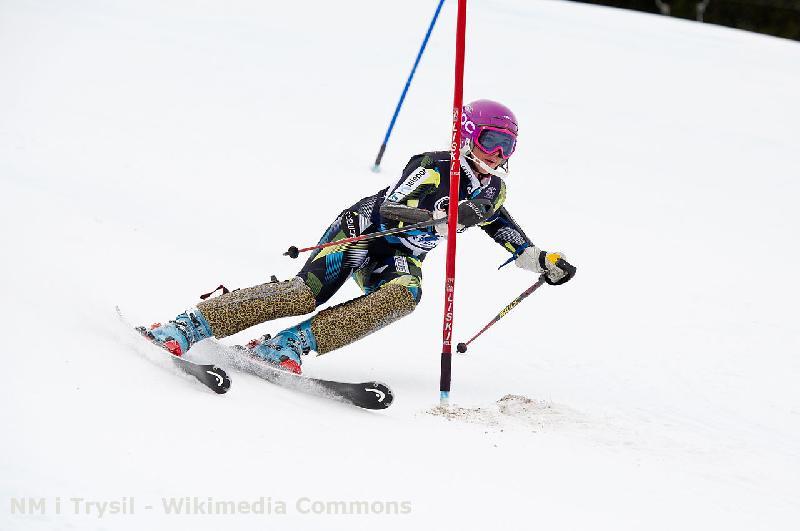 Skigebiet Ski- und Rodelzentrum Hohegeiss im Harz