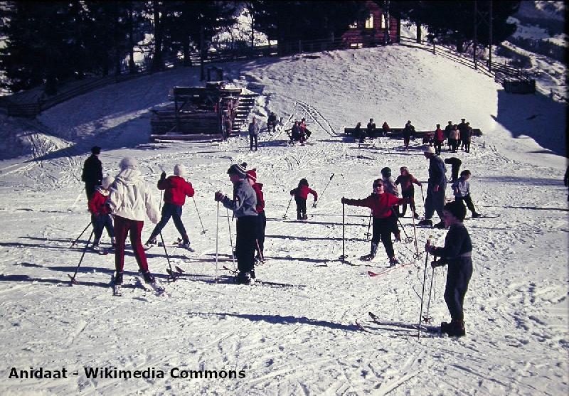 Skischule im Harz