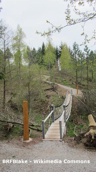 WeltWald Arboretum in Bad Grund im Harz