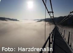 Seilhängebrücke über dem Rappbodetal im Harz