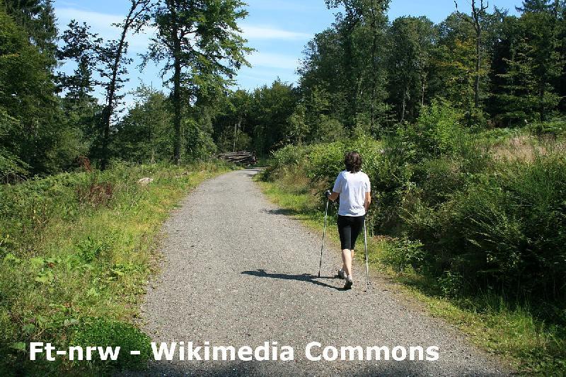 Nordic Walking im Harz