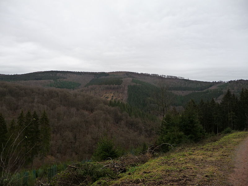 Die Hohe Warte im Odenwald