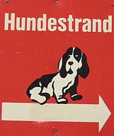 Urlaub Mit Hund Bodensee