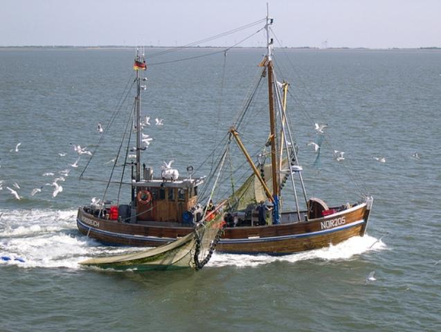 Fischkutter vor Norderney