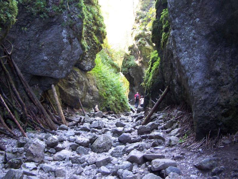 Schlucht in der Tatra bei Kościelisko