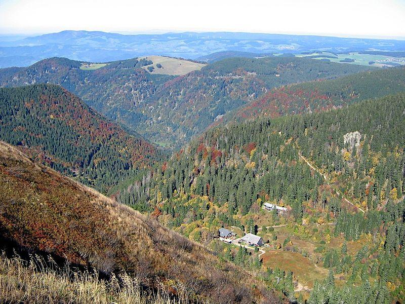 Naturparks Südschwarzwald