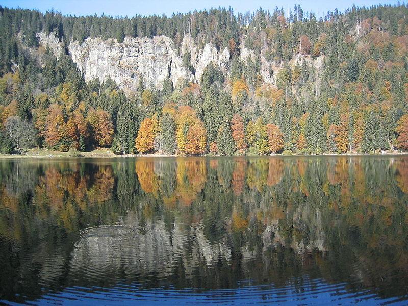 Der Feldsee im Breisgau