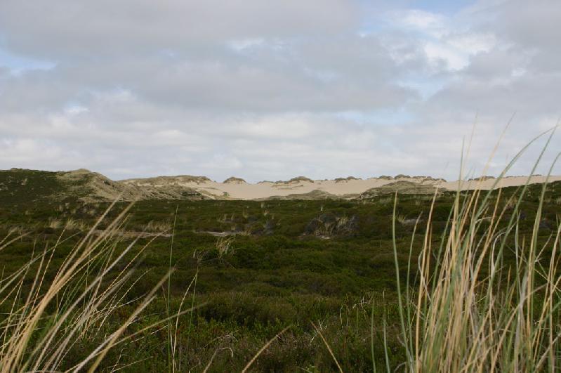 Landschaft Sylt
