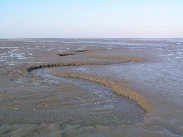 Weltnaturerbe Wattenmeer vor Sylt