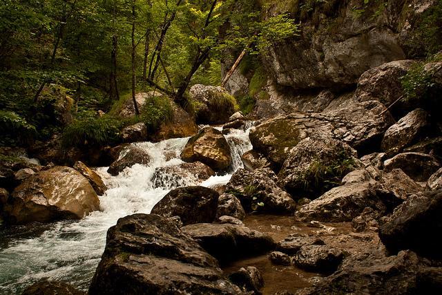 Carinthia Landscape