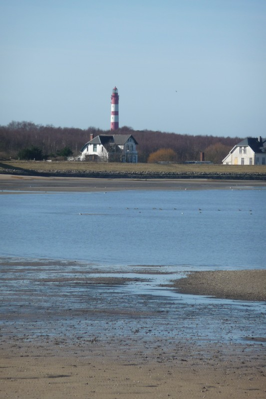 North Frisia - Amrum