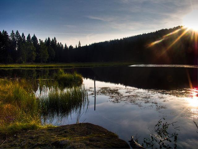 Bavarian Forest Arbersee