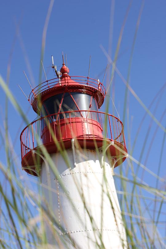 Leuchtturm hinter Gras