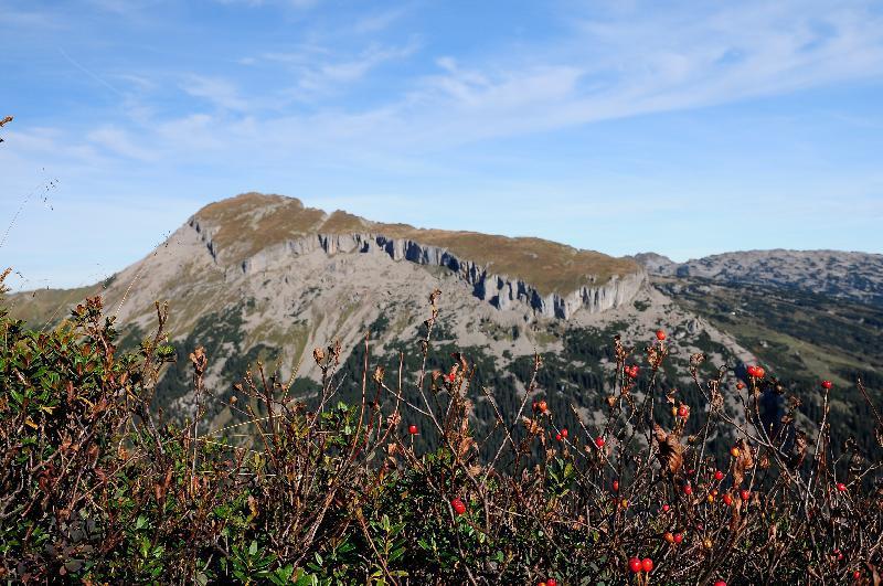 Vorarlberg - Kleinwalser Valley