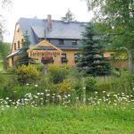 Ferienwohnung Wasserläufer - Grünbach-Muldenberg