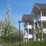 Exklusives Binz Appartement -  Strandkorb  - Binz
