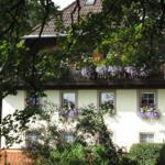 Hirschlehaus  FeWo Seebachtal - Hinterzarten