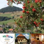 Ferienappartement Gisela - Bernau im Schwarzwald