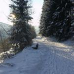 Wanderweg ( Golddorfroutenweg Oberkirchen) direkt oberhalb des Ferienhauses