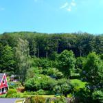 Das mittig im Mühlental gelegene Grundstück bietet einen Blick auf beide bewaldete Hänge.