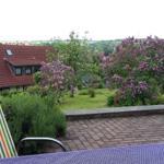 Genießen Sie den Ausblick auf den blühenden Garten von der Terrasse .
