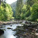 Romantisches Okertal mit Wildwasserkajak fahren und Freiklettern an den Klippen