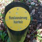 Das Naturschutzgebiet Hainholz vor der Tür: Erdfälle und englisch anmutende Landschaft.