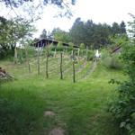 Garten - Weinberg