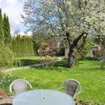 Blick in den Garten zur Kirschbaumblüte