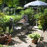 Aussicht auf die Gäste-Terrasse