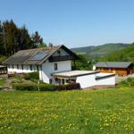 Blumenwiese  mit Hausrückseite
