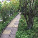 Der Zuweg zur Wohlfühl-Oase Garten