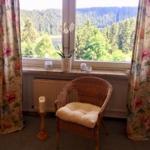 Gemütliche Leseecke im Wohnbereich mit herrlichem Blick über die Talsperre und die Harzberge
