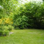 Garten Bild2
