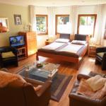 Großer Wohn/- Schlafraum mit SAT-TV & DVD, Sofa, Sessel mit Fußhocker.