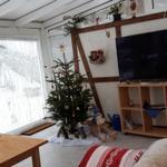 der Wintergarten um die Weihnachtszeit