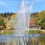 Der Hahnenkleer Teich im Herbst