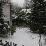 Blick in den Garten im Winter