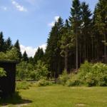 Der romantische Fichtenwald ist ganz in der Nähe und Sie können in seinem Schatten wunderbar wandern