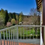 Blick vom Balkon in den Kurpark