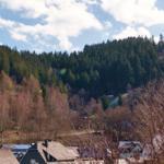 Fewo No.43 - Blick zur Ohrenbergschanze