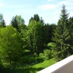 Ausblick vom Balkon im Sommer