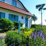 Ferienhaus Sonnenblume - Dranske
