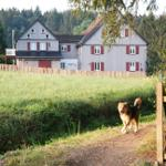 Ferienhaus tomGalme - Buntenbock