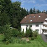 Haus Hubertus, FeWo 3 Kükennest mit Balkon - Elend