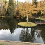 Ausblick von der Terrasse im Herbst