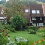 Gartenblick von der Kirschbaum-Terrasse hinunter aufs Haus