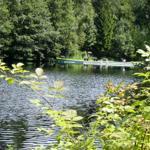 bis zum gepflegen Waldschwimmbad sind es nur 10min Fußweg