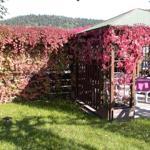 Pavillon auf Terassen-Freisit
